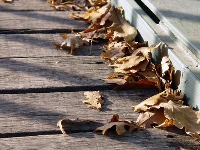 Herbstlaub-auf-Brucke-540809_web_R_K_by_Mc-Add_pixelio-de